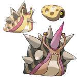 Conch Evolution.