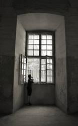 window.. by Esteras