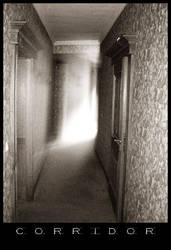 Haunted Corridor by artificialgekko