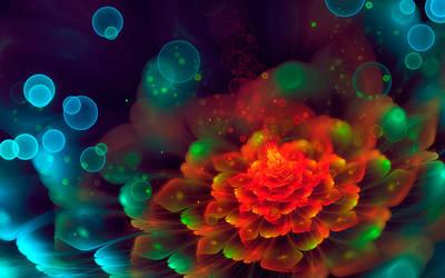 Rainbow bloom