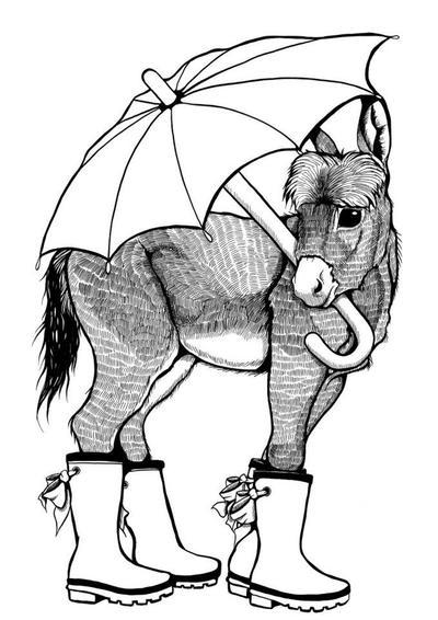 Donkey in Wellies by DawnUnicorn