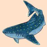 Whale Shark: Shark Week 2017