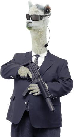 Llama Bodyguard by DMentia