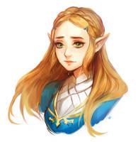 Zelda by Ariuemi