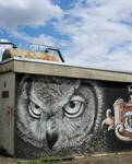 le cri du hibou by Pippa-pppx