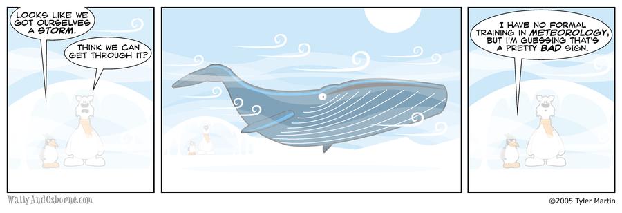 0008 Whale Storm by wallyandosborne