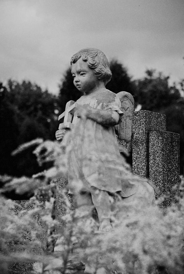 Misplaced Childhood II by ewusiap
