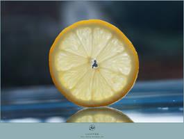 Lemon by LilyStox