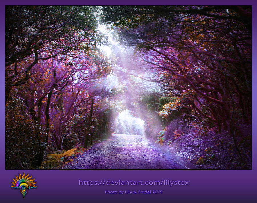 Magical Forest - Premade Background by LilyStox