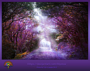 Magical Forest - Premade Background