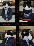 Fursuit Karu comissao by FursuitBrasil