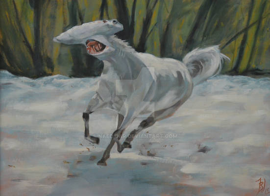Tennessee Hammerhead - Sphyrna Zygaena Equus