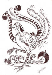 Lyrebird Tattoo Design by LyrebirdJacki
