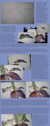 Tutorial - Friarbird by LyrebirdJacki