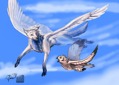 Teach me how to fly [collab]
