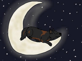 Dreams of a Wolf by desertSelkie