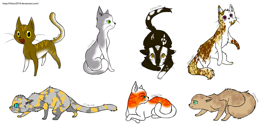 Warrior Cats Untold Tales Horse