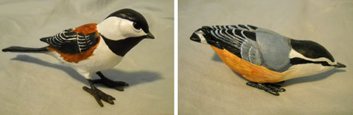 Chickadee and Nuthatch by kimrhodes