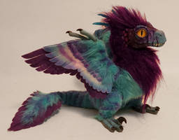 feather-raptor:purple/aqua