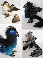 Various Custom Raptors by kimrhodes