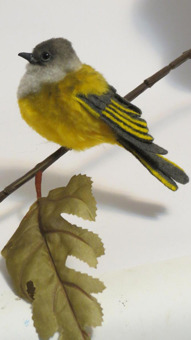 Grey-headed Canary Flycatcher by kimrhodes
