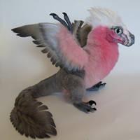 Rose-Parrot Raptor