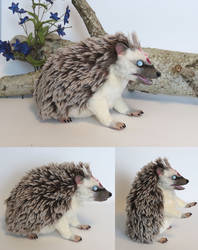 Spirit Hedgehog