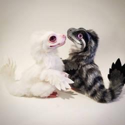 b/w baby raptors