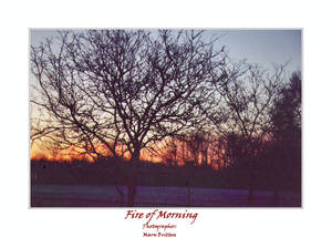 Fire of Morning
