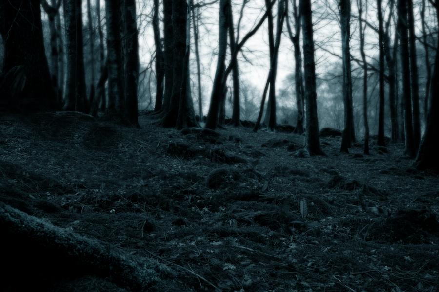 art dark car forest - photo #12