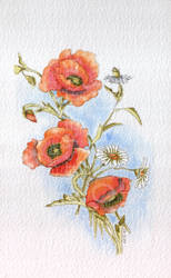 Poppies and Daisies (2014) by stefonthesea