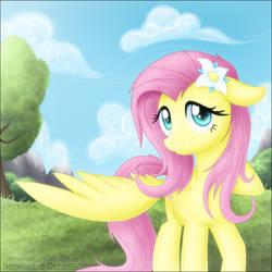 Sweet Fluttershy by SkyHeavens
