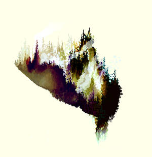 The Postconcious Mind