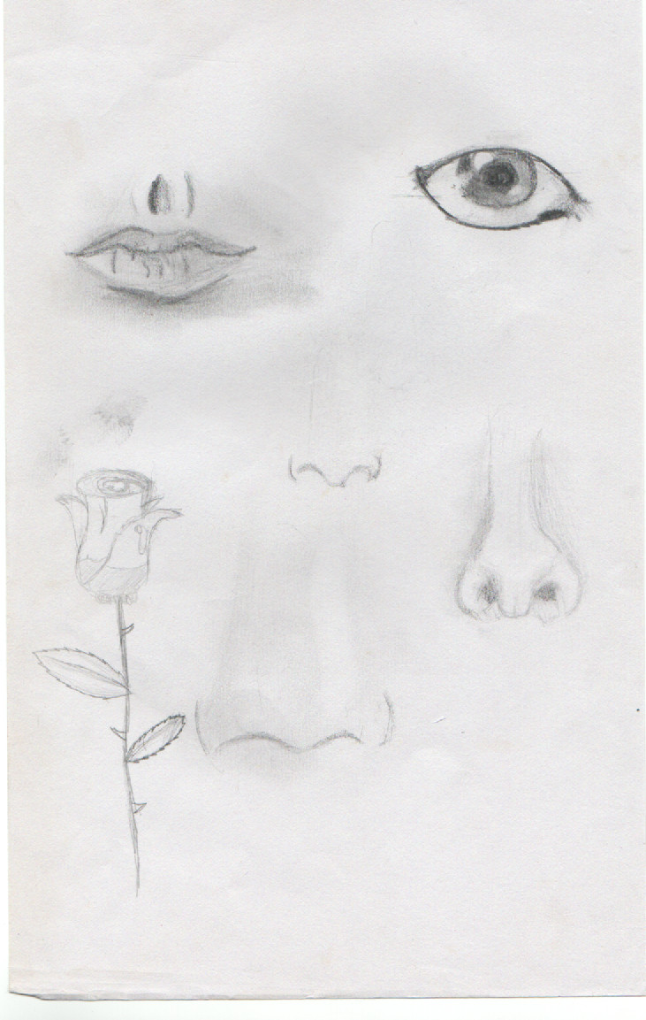 Body Part Sketches By Lolomech On DeviantArt