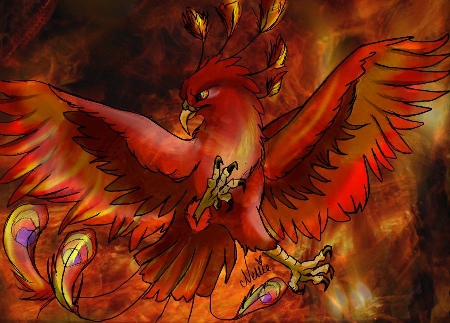Fawkes Is A Phoenix Harry Phoenixes Bu By J K Rowling