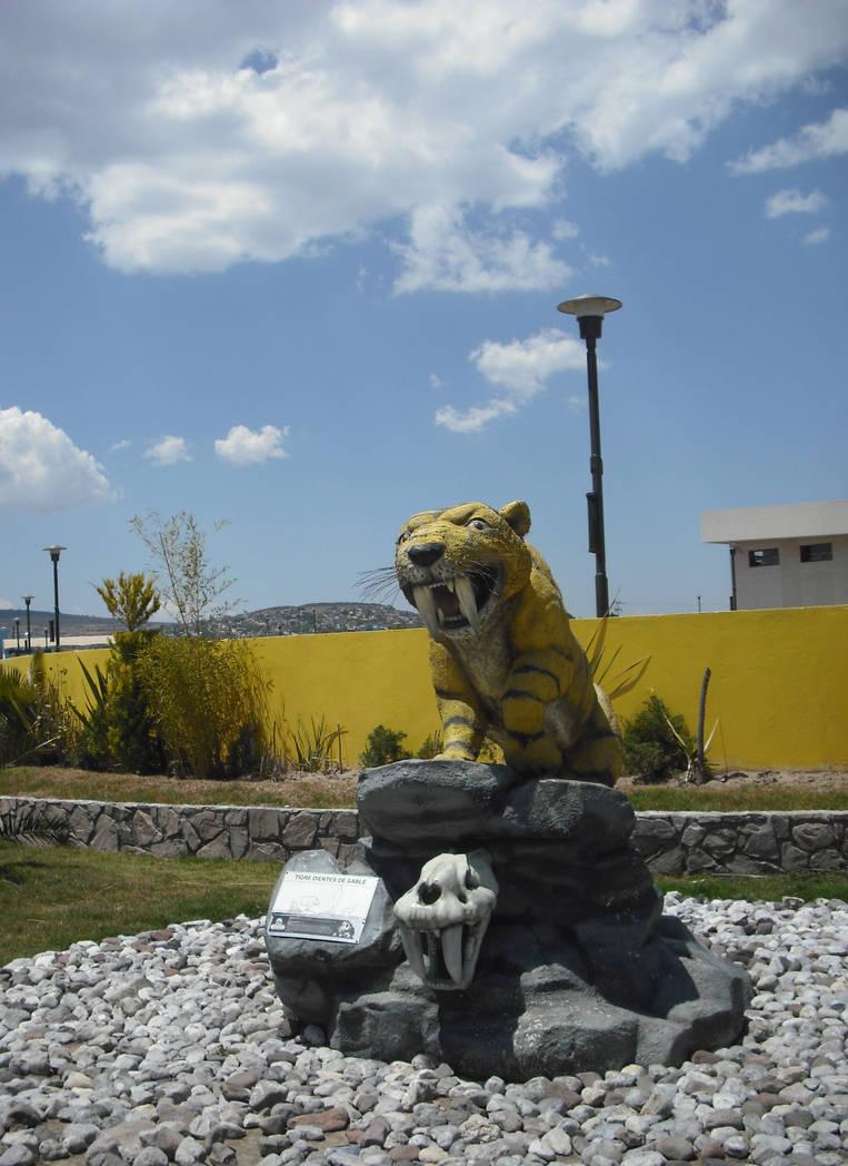 Dino Parque 12- Dientes de Sable