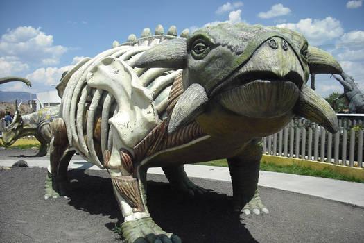 DinoParque-2 Pachuca,Hidalgo