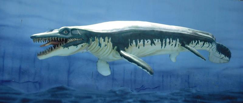 DinoParque 24