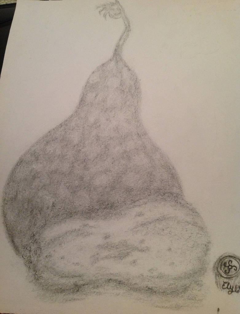 Dibujo Artitico 2- Un par de Calabazas
