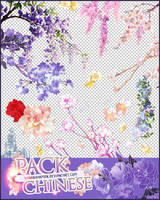 Pack-chinese