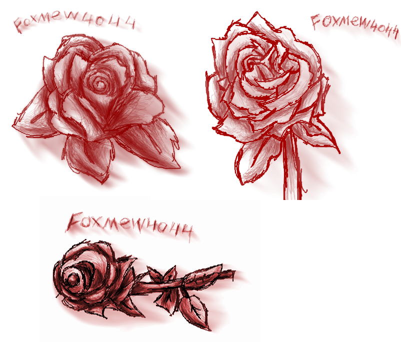 _at__roses_by_foxmew4044-dbmnzhc.png