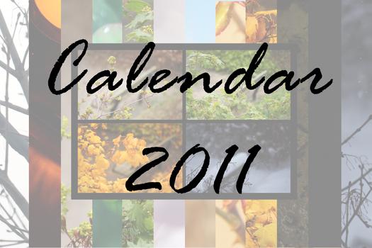 Calendar 2011 by petrova