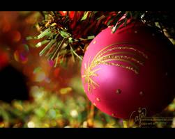 Christmas star by petrova
