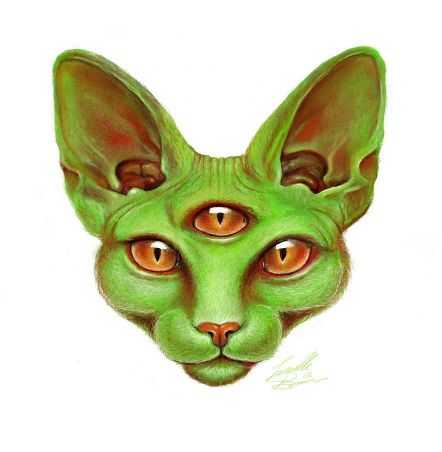 Third Eye Cat by Jelly-716