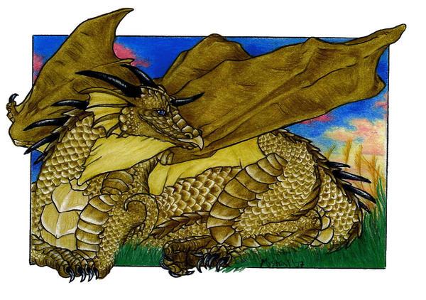 Dragonmistral's Profile Picture