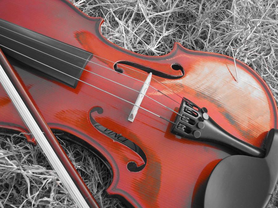 Pancho The Violino by Kailina5815