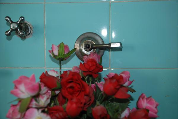 Flores de plastico by ojosbienabiertos on deviantart - Flores de plastico ...