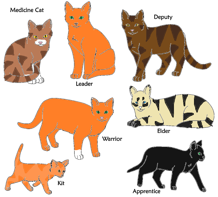 Warrior cats in power of three outcast by mflame323 on The three cats