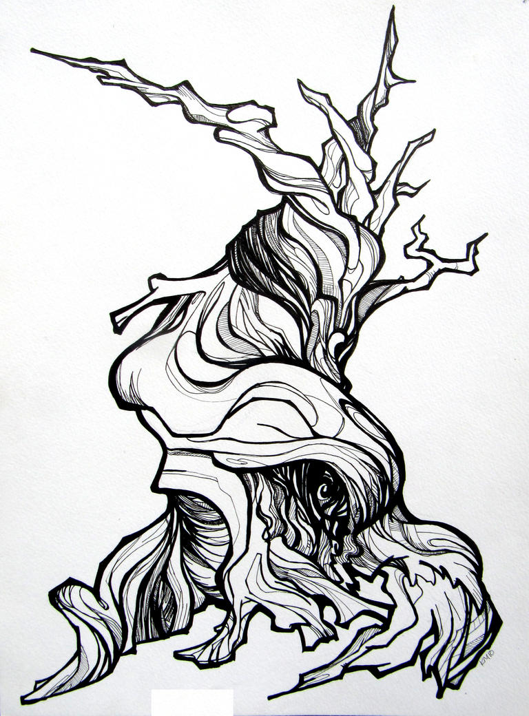 Bristle Cone Pine By Applecorekevin On Deviantart