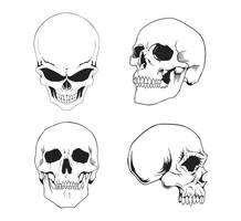 Free Vector Skulls Pack by artamp